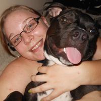 dog-adoption-pit-bull-Quinn-Smith