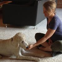 Chloe in training