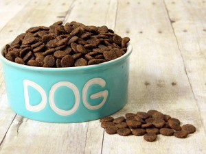 Dry Dog Food Calorie Count Petfinder