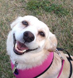 Marlee is all smiles.