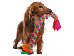diy-dog-toy-ideas