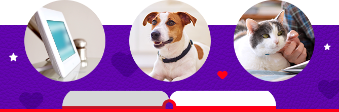 three images in a banner, tablet, dog and cat banner